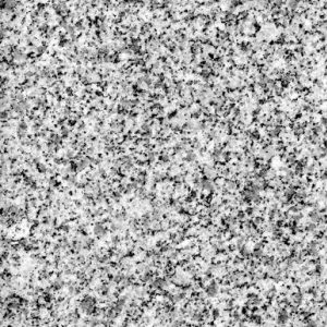 bella white